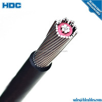 600V two conductor SEU Concentric cable AA8000 Aluminum conductor XLPE insulation PVC sheath 90 degree 2x4awg price