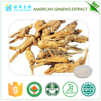 biologically active food supplement health supplyment products ginseng extract American ginsenosides 7%