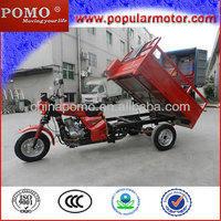 2014 Indonesia Popular Hot Sale 250cc Cargo Tricycle Motorcycle