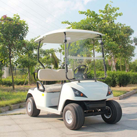 Star 2 seater small golf cart with CE certificate DG-C2(China)