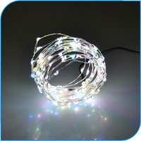 Christmas Decoration Promotion Adapt Powered Holiday Time Led String Lights