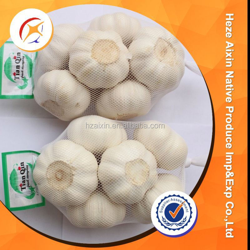 Fresh Organic White Garlic Price