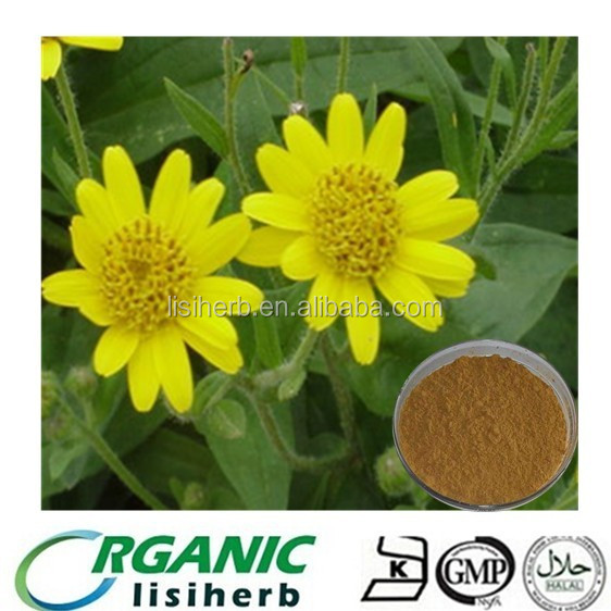 100% natural High quality Arnica montana flower extract powder for sale