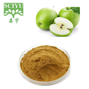 Pass Korea KFDA Test Green Apple Powder and Green Apple Extract Powder Polyphenols10%-80%