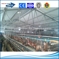 economice design stronger and durabope insulation steel structure prefab layer chiken house