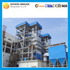 Chinese High Quality Coal Fired Biomass fired Thermal Power Plant