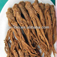 Angelica extract in Herbal extract