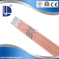 stainless steel 304 stainless steel electrodes