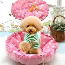 Colorful Indoor Removable Warm Kennel For Dogs