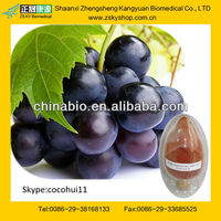 GMP manufacturer supply high quality Antioxidant Grape Fruit Seed Extract powder