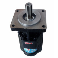 tipper truck gear pump, iron casting gear pump, hydraulic prats