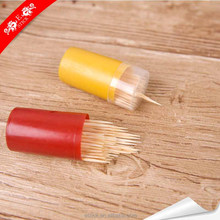 Disposable beautiful reusable multifunction toothpick with free samples