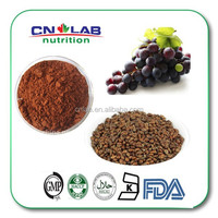 High Quality Plant Extract Grape Seed Extract with Polyphenols 95% by UV