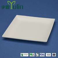 F1-PL-07-S bagasse square plate