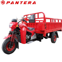Chinese New Motor Africa market Tricycle Triciclo Motocar Motocarro Mototaxi