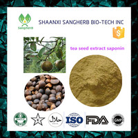 high quality tribulus terrestris extract powder and oil saponins protodioscin of ISO9001 Standard