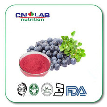 IOS&GMP certified 100% Natural fruit powder Blueberry juice powder/blue berry extract beverage powder for sale