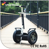 Standing Scooter F4 4 Wheels Electric Stand Up Scooter Ce On Sale
