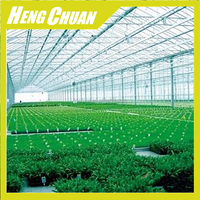 Environmental Greenhouses For Agriculture