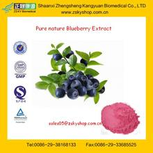 Pure Natural Blueberry Extract from GMP Factory