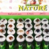 REAL Insect Novelty Ballpoint Pen Gift
