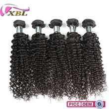 Hot Sale High Quality 100% Virgin 7A Malaysian Curly