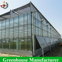 High Quality Multi Span Glass Greenhouse