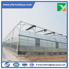 Commercial Tunnel Poly Film Greenhouse for Tomato Planting