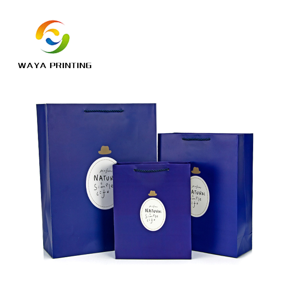 luxury Custom Make Gift Printed Paper Shopping Bags