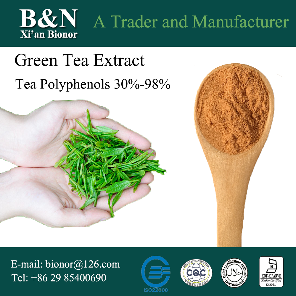 Tea Polyphenol 30%-98% Green Tea Extract Powder