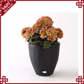 China wholesale indoor self-watering oval shape flower pot