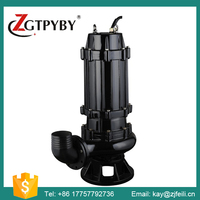 Cast Iron Water Pump Raw Sewage Pumps with Coupling
