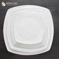 All Kinds of Size Dinner Dishes Ceramic Plain Color Square Plate