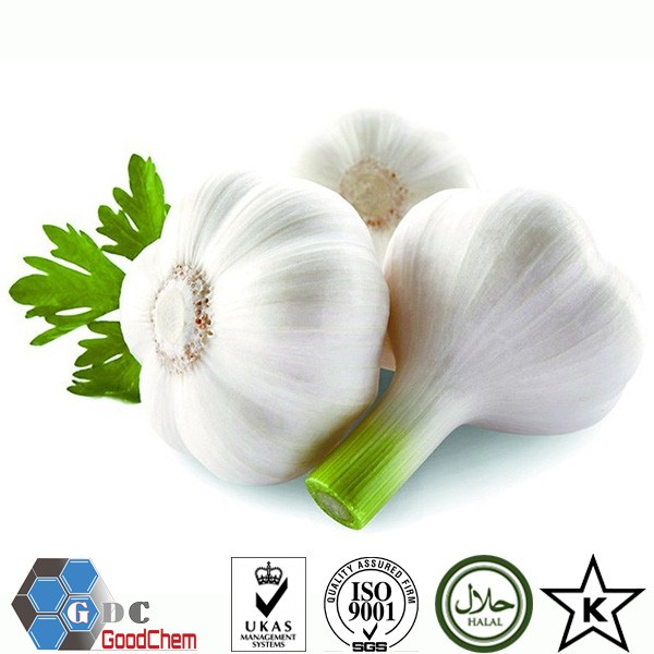 2016 New Crop Dehydrated Garlic Powder Supplier