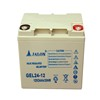 Long life VRLA rechargeable 12v 24ah lead acid tubular battery