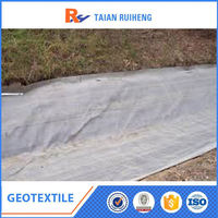 geotextile price of PET Filament Spunbond composition of geogrid and geotextiles