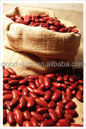 DRKB Heilongjiang Origin Red Kidney Bean Price