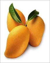 food products mangoes