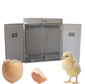 FRD-5280 Digital saving energy solar best selling automatic egg incubator price