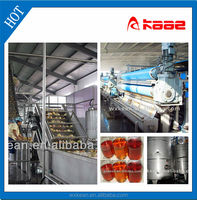 Turnkey project apple juice production line