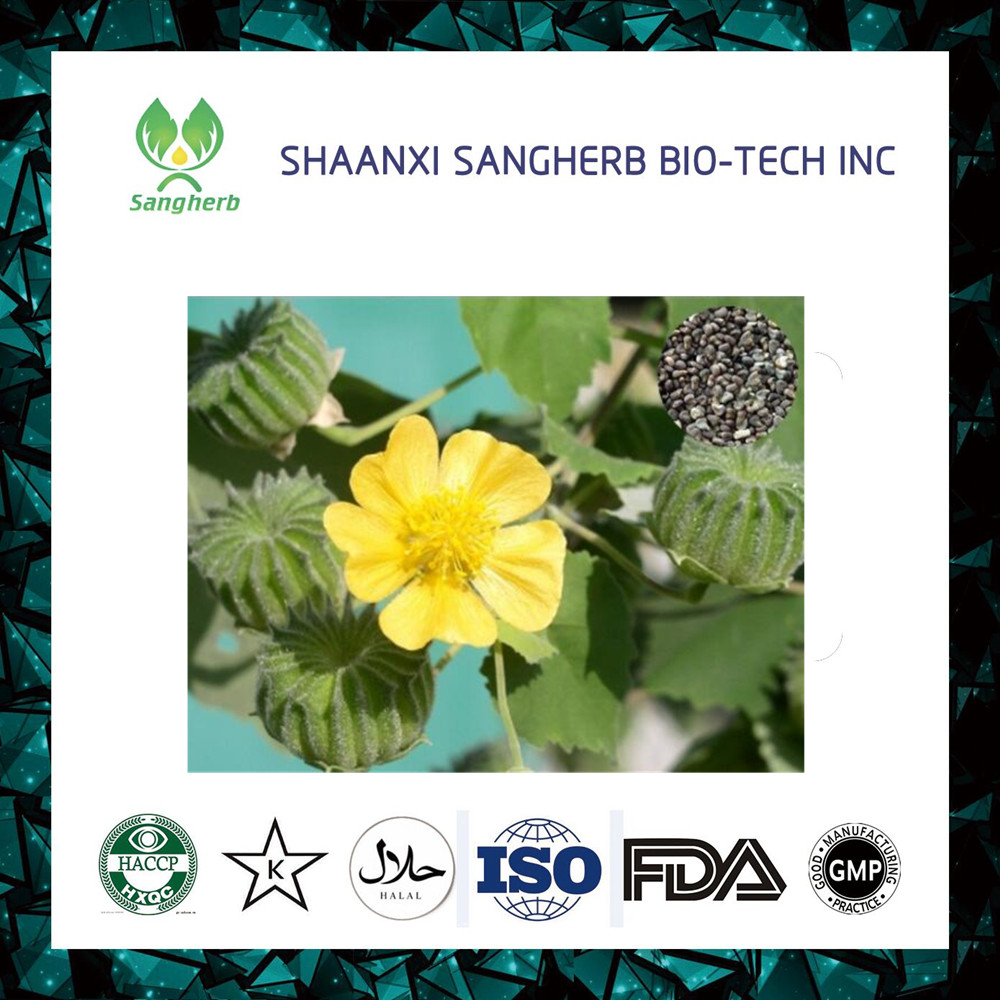 Sangherb Supplier 4:1 ~ 20:1 Cluster Mallow Fruit/Seed Extract Powder