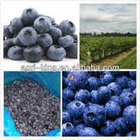 Frozen Blueberry All Kinds Of Fruits