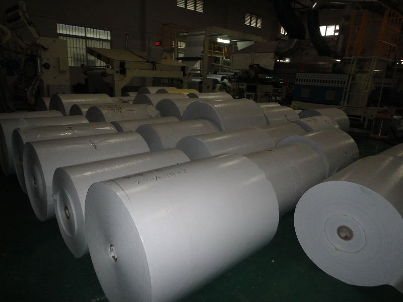 China Silicone coated paper