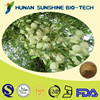 Factory Supply Yucca Schidigera Extract Powder for Feed