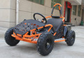 48V 1000 W New Electric Go Kart