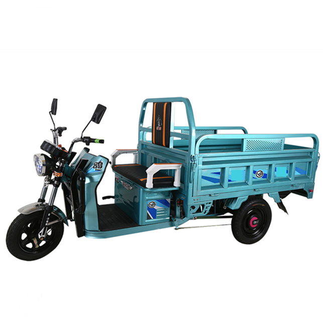 dc motor 500 watts three wheel electric car tri bike