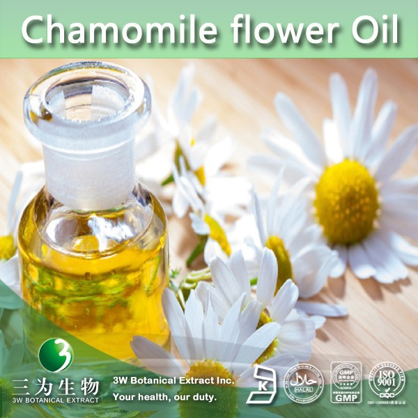 100% Natural Chamomile flower Oil | Chamomile Oil | Chamomile Extract from 3W GMP factory