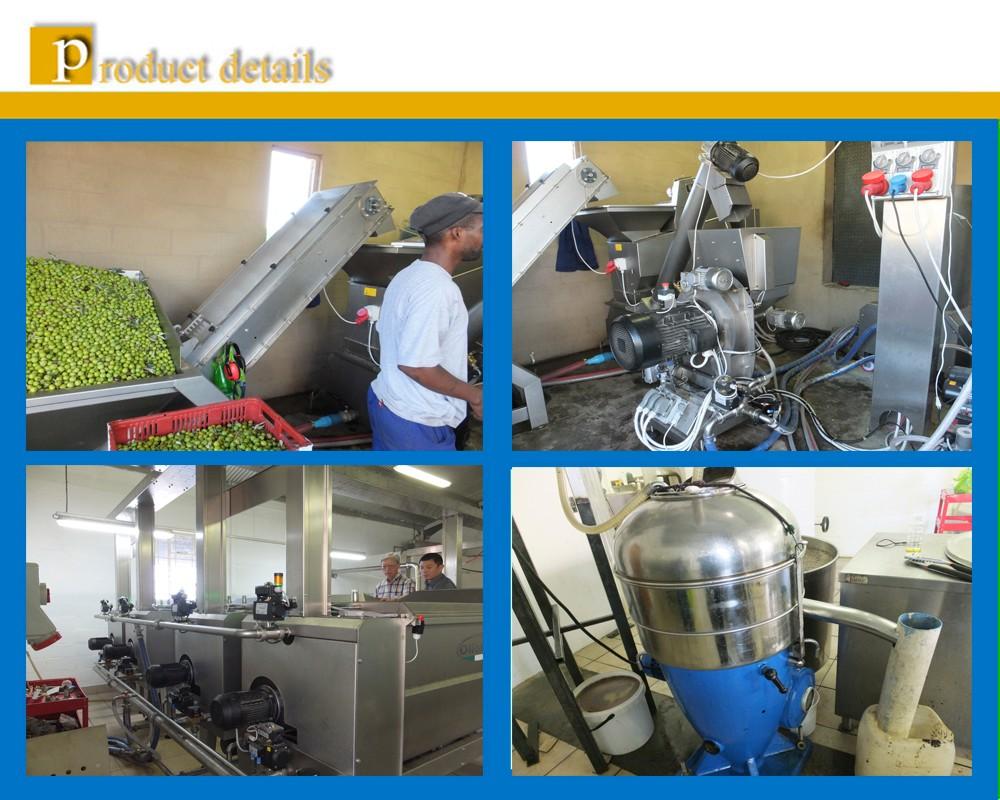 New modern type 5TPH Extra virgin olive oil cold extraction plant line by decanter and separator