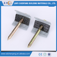China Shandong electro galvanized slivery and yellow color screw and cap