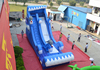 Hot inflatable dolphin water slide for sale